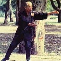 Origins - Grandmaster Ma Tsun Kuen